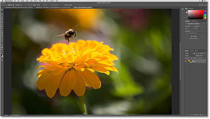 The raw file opened in Photoshop as a smart object