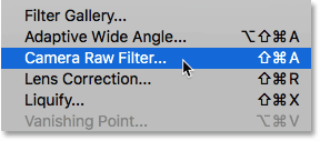Opening the Camera Raw Filter in Photoshop CC
