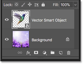 The vector smart object holding the Illustrator artwork in Photoshop