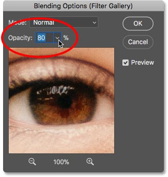 Lowering the opacity of the Diffuse Glow smart filter in Photoshop