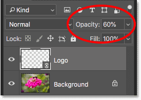 Lowering the opacity of the logo watermark to 60 percent