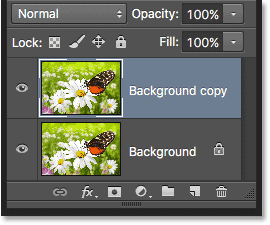 A copy of the Background layer appears in the Layers panel.