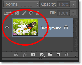 The preview thumbnail in the Layers panel in Photoshop.