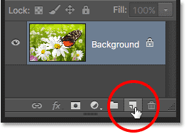 The New Layer icon in the Layers panel in Photoshop.