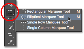 Selecting the Elliptical Marquee Tool from the Tools panel. Image © 2016 Photoshop Essentials.com