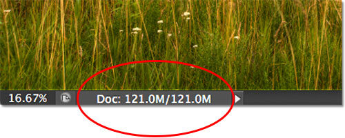 The current file size of the image as displayed in the document window.