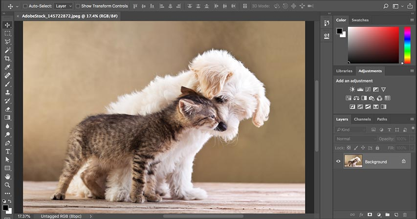 Learning the Photoshop interface - Complete guide