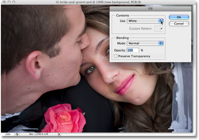 The Fill dialog box appears when Photoshop reaches the first Fill step.