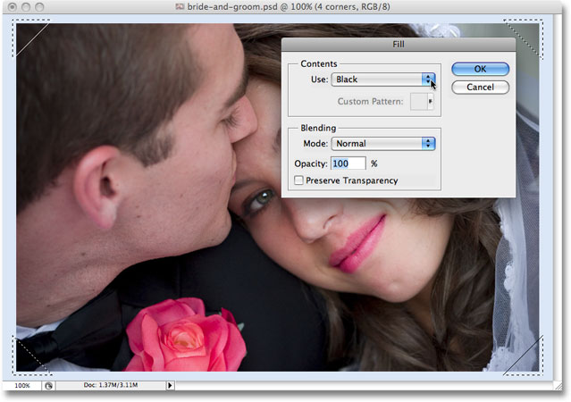 The Fill dialog box opens once again when Photoshop reaches the second Fill step in the action.