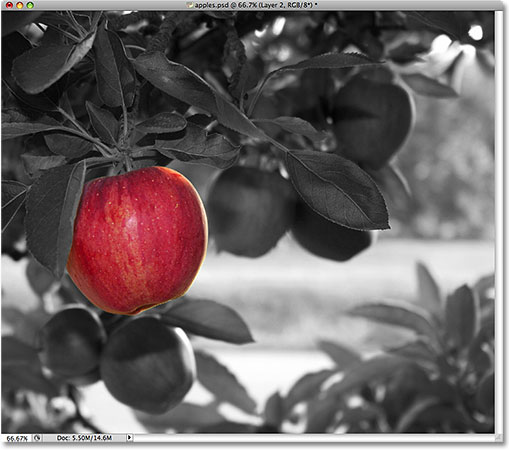 The apple remains in full color.