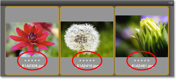 A five star rating appears below three of the thumbnails in the Content panel. Image © 2015 Photoshop Essentials.com