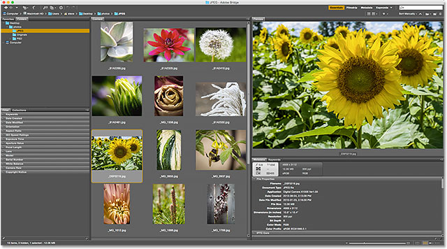 The resized Preview panel. Image © 2015 Photoshop Essentials.com