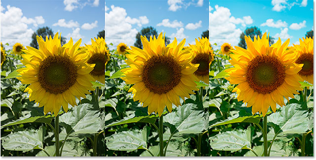 A comparison of the same photo in sRGB, Adobe RGB and ProPhoto RGB. Image © 2013 Photoshop Essentials