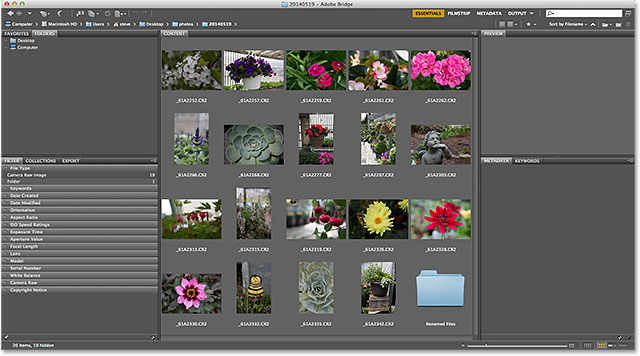 Navigating to the image folder in Adobe Bridge CS6. Image © 2014 Photoshop Essentials.com