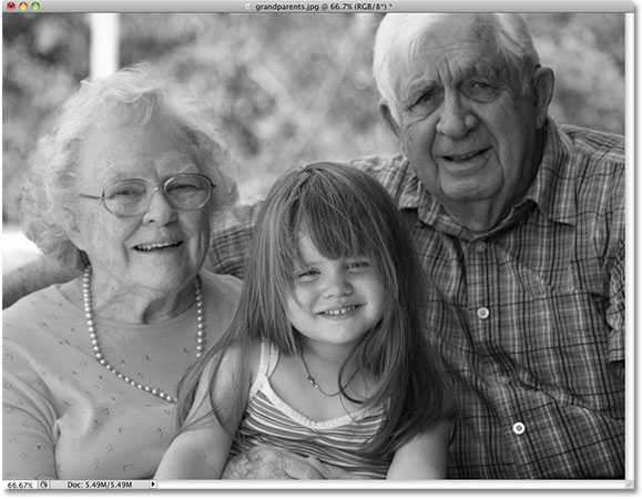 The photo appears black and white after desaturating the color in Photoshop. Image © 2010 Photoshop Essentials.com