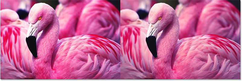 Comparing the image contrast results using the Overlay and Soft Light blend modes in Photoshop