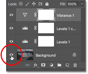 Holding Alt (Win) / Option (Mac) while clicking the Background layer's visibility icon.
