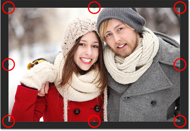 The default crop border and crop handles around the image.