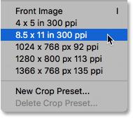 Choosing a crop size preset.