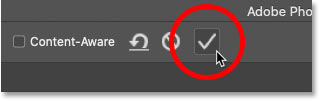 Cropping the image with the Crop Tool by clicking the checkmark in the Options Bar