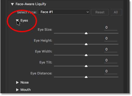 The Eye Size, Eye Height, Eye Width, Eye Tilt, and Eye Distance sliders for Face-Aware Liquify.