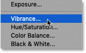 Adding a Vibrance adjustment layer to the Photoshop document