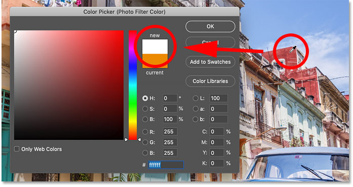 Sampling any color from the image sets the Photo Filter to white in Photoshop