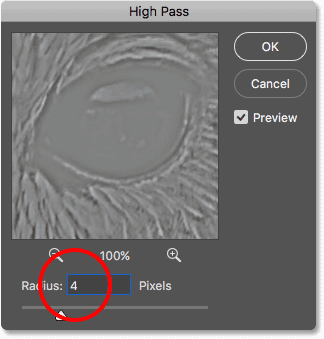 Increasing the High Pass radius value to highlight edges in the image