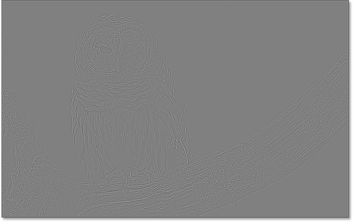 The image with subtle edge detection using the High Pass filter and a low Radius value