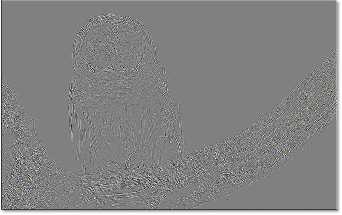Increasing the High Pass radius value reveals edges in the image
