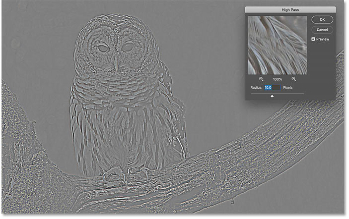Selecting Photoshop's High Pass filter turned the image gray