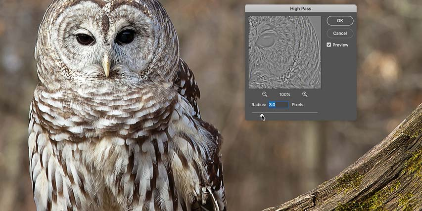 How to sharpen images in Photoshop with the High Pass filter