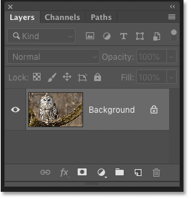 Photoshop's Layers panel showing the unsharpened image
