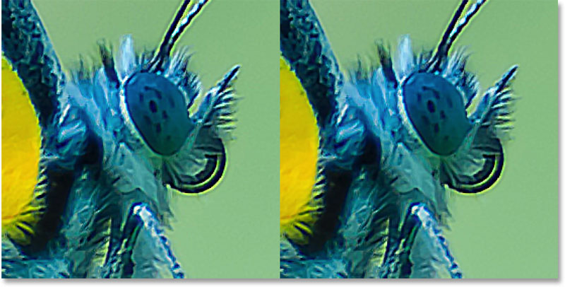 A comparison showing the sharpened image with clipped highlights and the version with highlight detail restored.