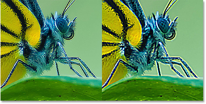 The Smart Sharpen halos (left) and the Unsharp Mask halos (right) using the same Radius value in Photoshop