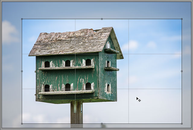 The 3x3 grid overlay for the Crop Tool in Camera Raw. Image © 2013 Steve Patterson, Photoshop Essentials.com