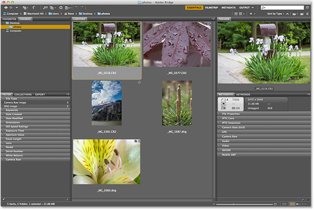 camera raw filter photoshop cs6 download