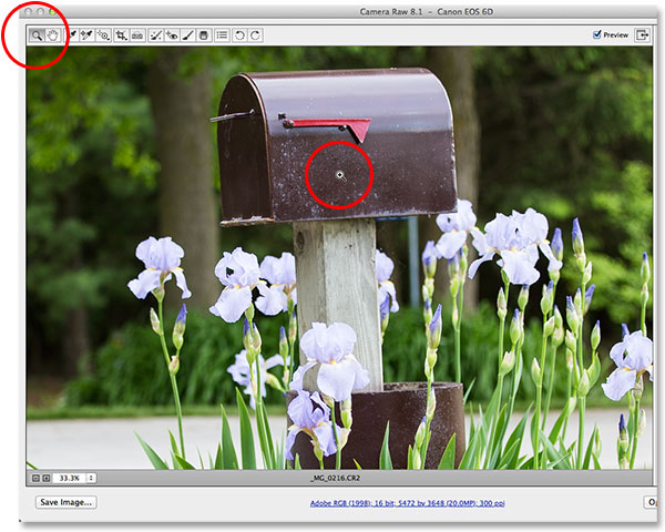 Selecting and using the Zoom Tool in Camera Raw. Image © 2013 Photoshop Essentials.com