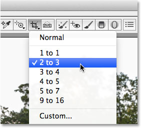 Selecting a preset aspect ratio for the Crop Tool in Adobe Camera Raw 8.
