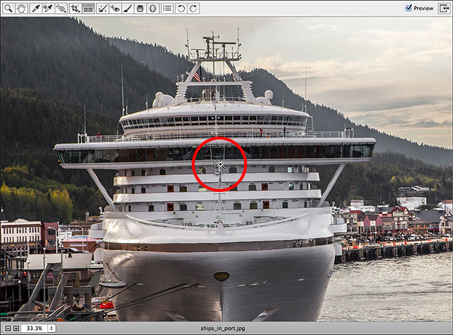 Using the Zoom Tool in Camera Raw to zoom in on the image.