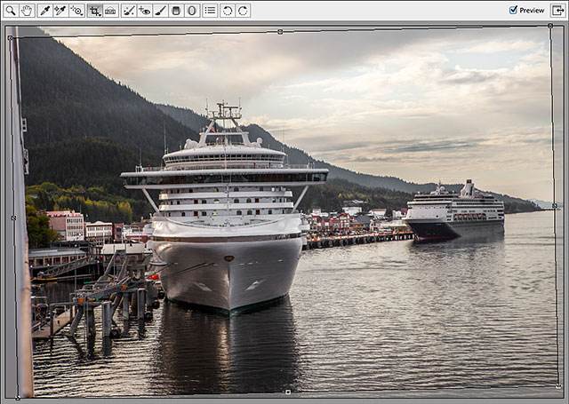Camera Raw automatically draws a cropping border around the image.