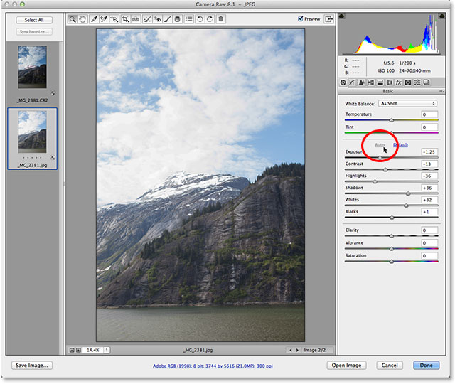 The JPEG version of the image after clicking the Auto button in Camera Raw. Image © 2013 Photoshop Essentials.com