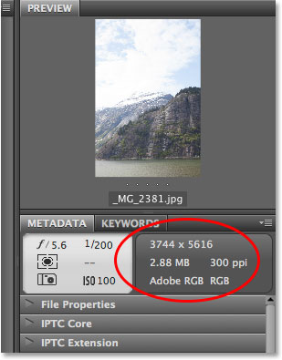 Viewing the Metadata panel in Adobe Bridge. Image © 2013 Photoshop Essentials.com