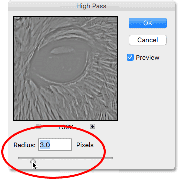 Setting the High Pass filter Radius value to 3 pixels. Image © 2016 Photoshop Essentials.com