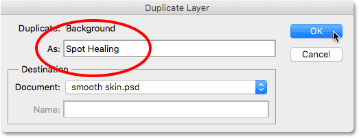 The Duplicate Layer dialog box.