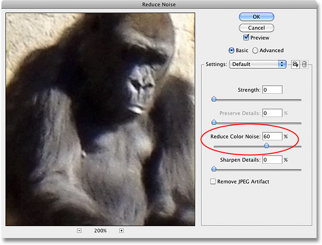 The color noise in the image has been removed with the Reduce Noise filter in Photoshop. Image © 2010 Photoshop Essentials.com