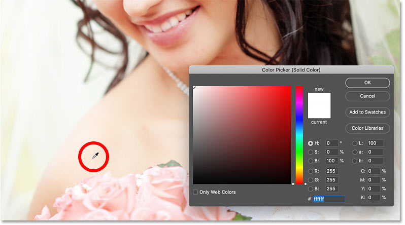 Sampling a color for the photo border from the image.