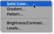 Adding a Solid Color fill layer to the document.
