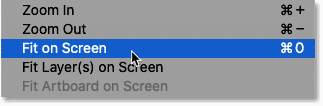 Selecting the Fit on Screen command from the View menu.
