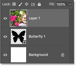 Photoshop's Layers panel showing the image above the shape layer